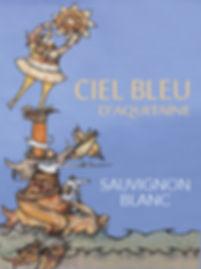Advent 14 - Ciel Bleu d'Aquitaine.jpg