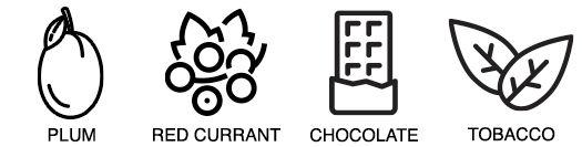 Flavors-XMASSWEATER.jpg
