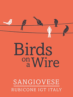 birds-on-a-wire.jpg