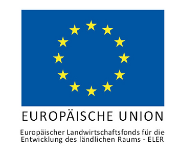 EU Logo.PNG