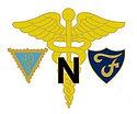 Nurses Emblem 1.jpg
