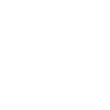 Spatial Outlook square.png
