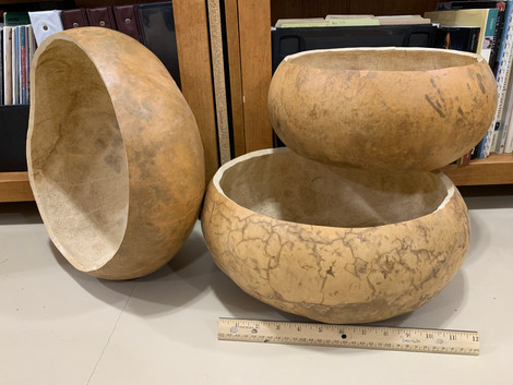 Large gourds, cleaned and ready