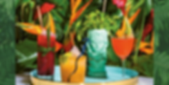 TRopical cocktail image 2.png