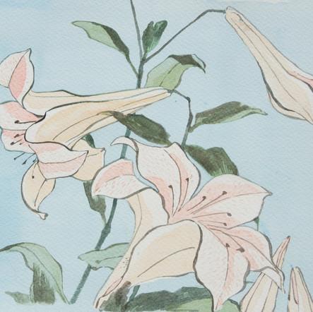 Hokusai's Lilies