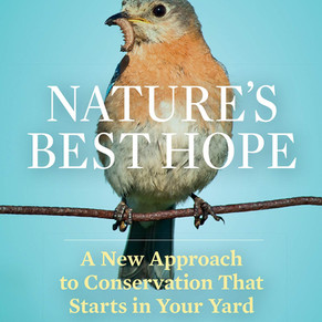 Nature's Best Hope, a Call to Conservation