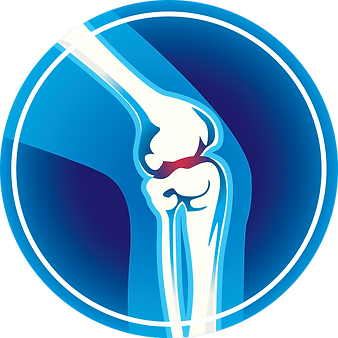 knee joint icon_0.png