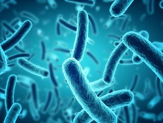Como Bactérias Criam Resistência a Antibióticos?