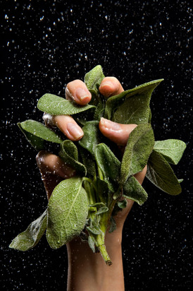Greens Hand Modeling by Ashly Covington