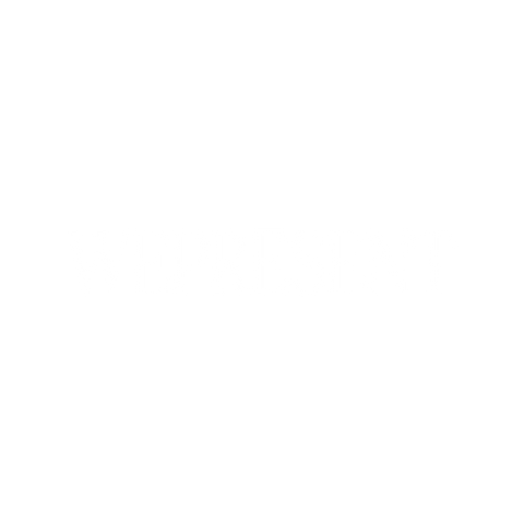 Alicia van Zyl_Press_WePresent Logo.png