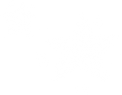 Stars white.png