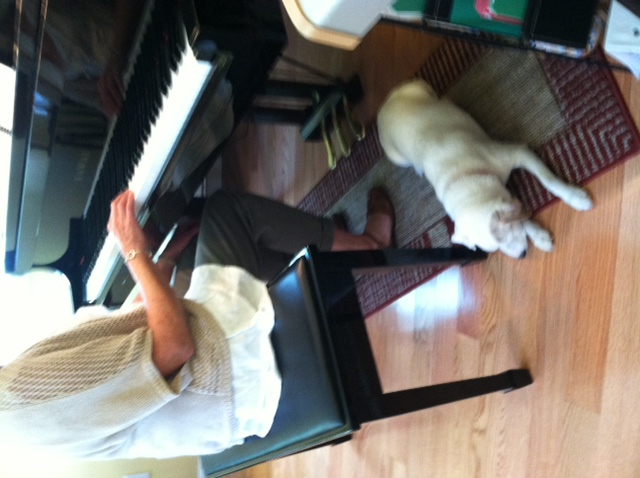 Piano Studio Mascot, Russell