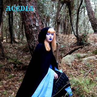acedia POSTCARD.jpg