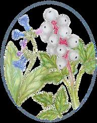 Amanda's Garden Logo