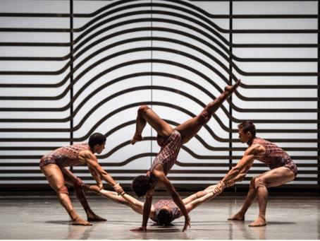 Dance Blog April: Professional Dance