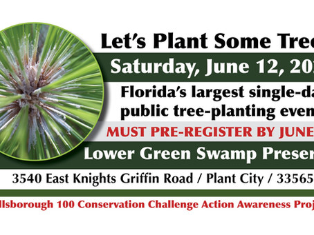 Pre-registration required for June 12 tree-planting at Plant City's Lower Green Swamp Preserve