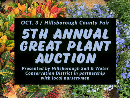 5th Annual Great Plant Auction set for Hillsborough County Fair, youth programs to benefit