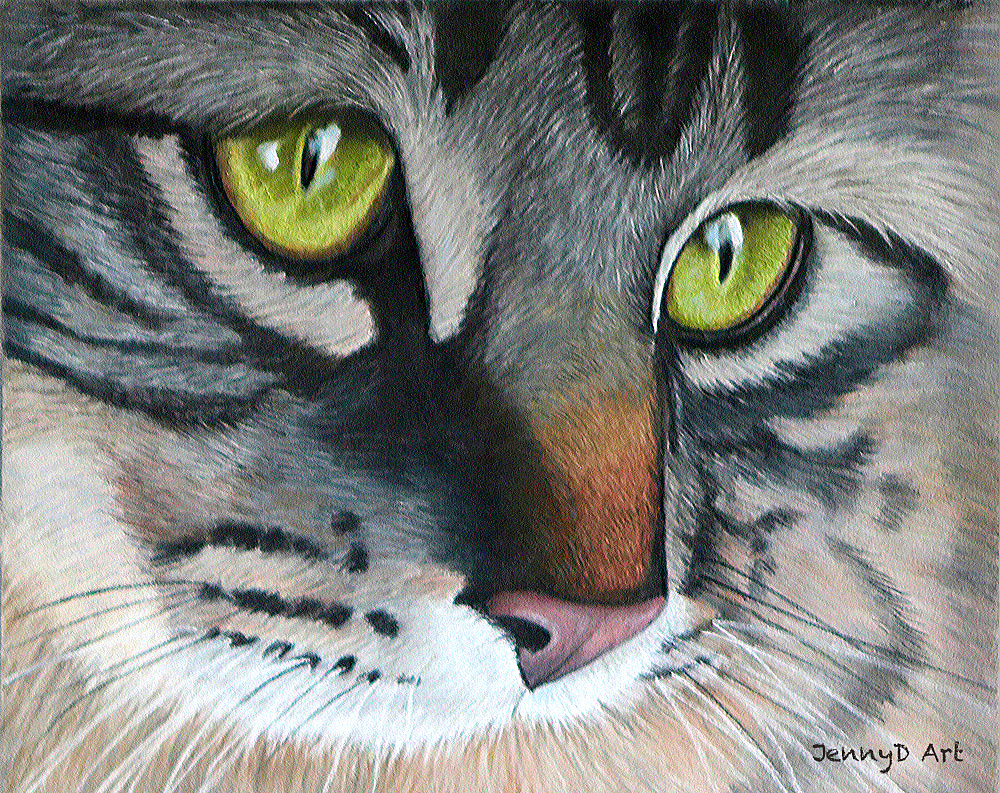 Tabby Cat in Pastel
