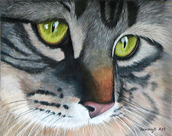 Tabby Cat in Pastel