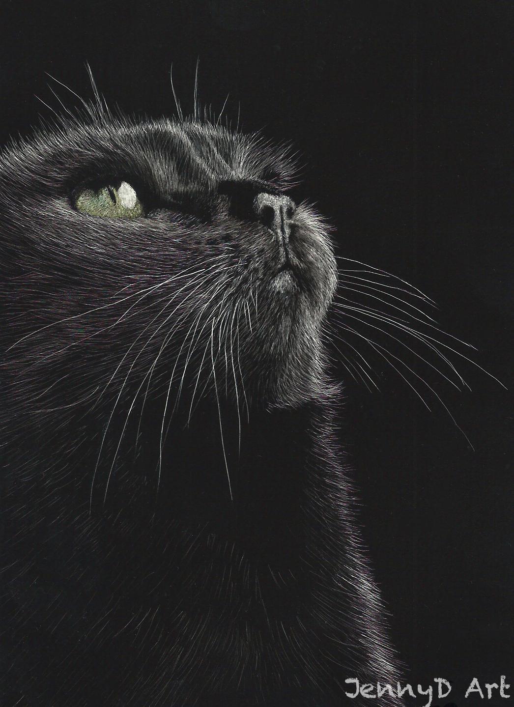 Black Cat wix