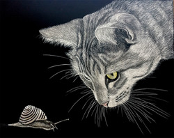I have my eye on you  scratchboard