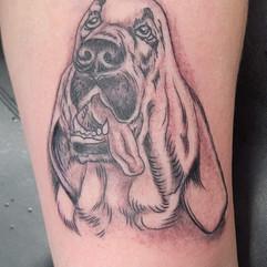 Bloodhound memorial tattoo