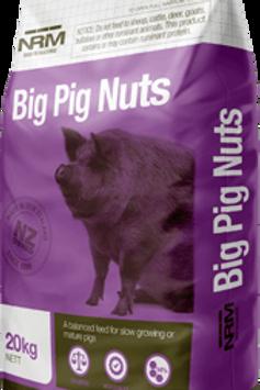 Big Pig Nuts