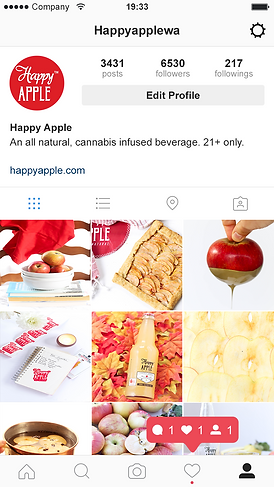 Instagram-Profile- Happy Apple-2017.png