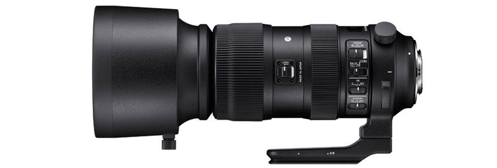 Sigma Sports 60-600mm 4.5-6.3 DG OS HSM für Nikon F