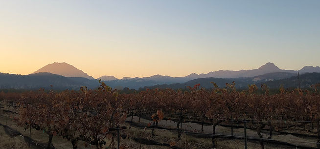Autumn in the Sutter Buttes