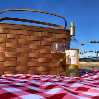 Picnic & Wine