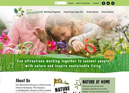 eco website.jpg