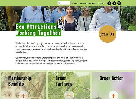 eco website 2.jpg