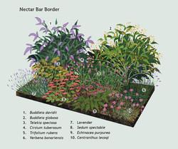 Nectar-Bar.jpg