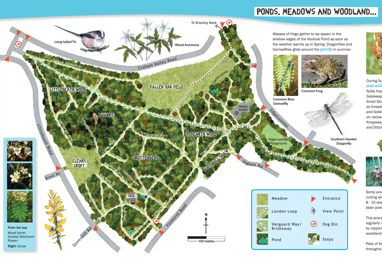 Littleheath Woods Map