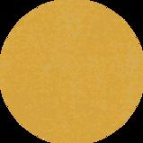 orange-circle.png