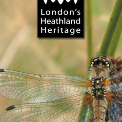 London's Heathland Heritage