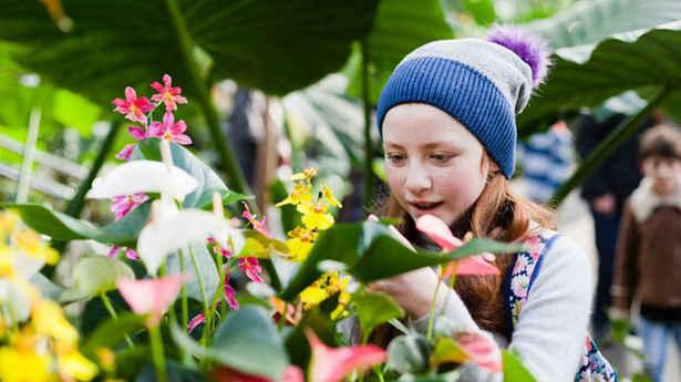 Kid-looking-flower.jpg