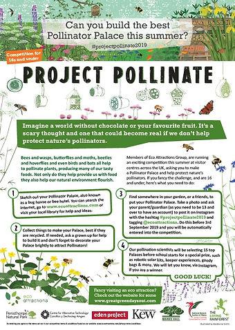 Project pollinate.jpg