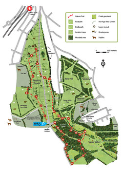 Happy Valley Trail Map