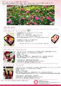 食べられる薔薇エディブルローズ裏面-1.jpg