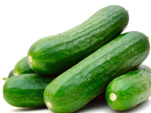 Lebanese Cucumber (Mercury)