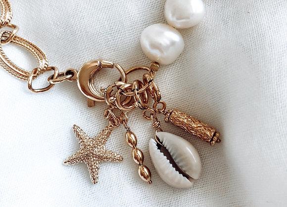 Charm's Étoile de mer
