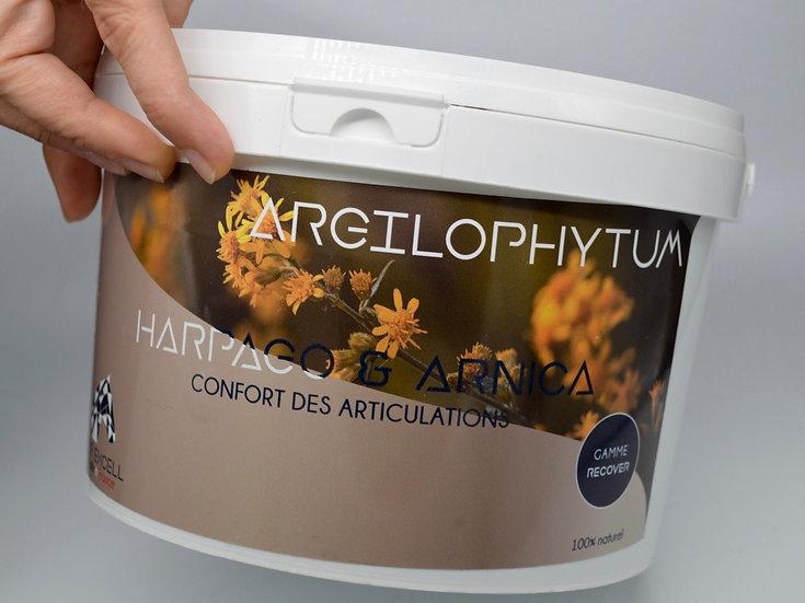 Argilophytum