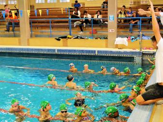 Zoom sur l'école de natation