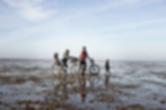 Panorama - Familie Vadehavet_29927-mediu