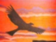 Seamus Tripp und der Donnervogel