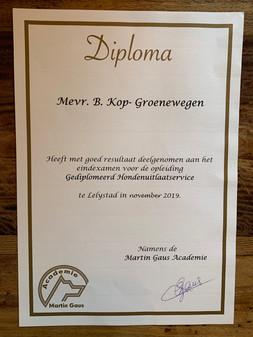 Diploma HUS nov. 2019