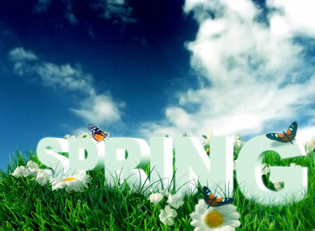 Spring is a season of great potential