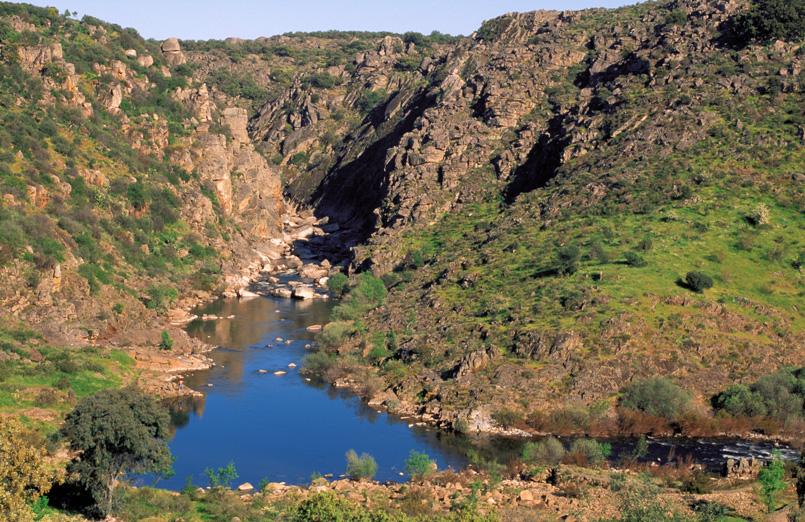Canhão do rio Erges